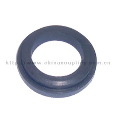 Gasket for sand blast couplings